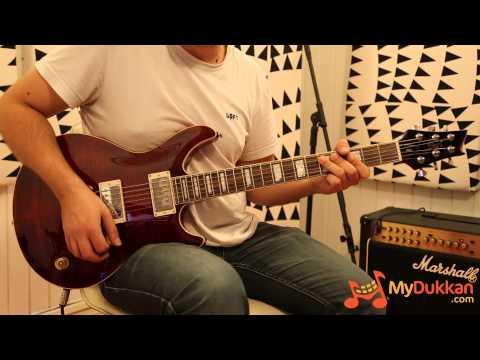 Cort M600 Electric Guitar Review - Budget PRS Killer 2